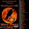 DJ Gallis (JR) – Sound Supreme Presents Why Pree Mix