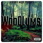 AirForce Music – Woodlums
